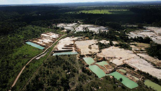 Déforestation : la Norvège bloque 30 millions d'euros destinés au Brésil