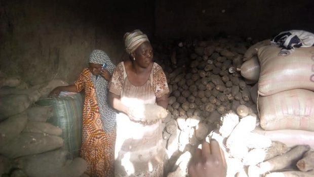 Kankan: les producteurs d'ignames demandent l'assistance du Chef de l'Etat…